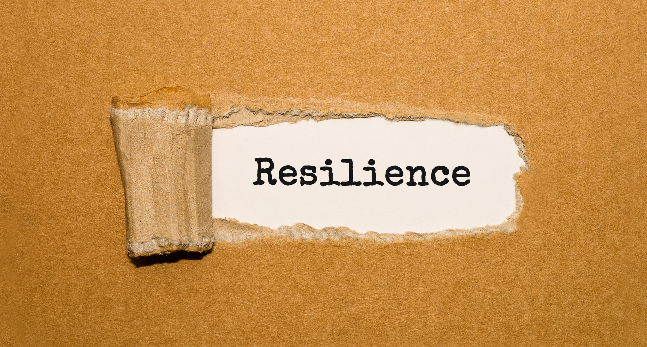 Post_resilience-2